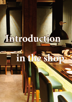 Introduction in my shop image